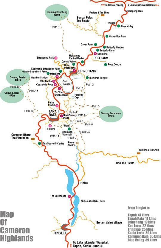 Cameron Highlands Maps